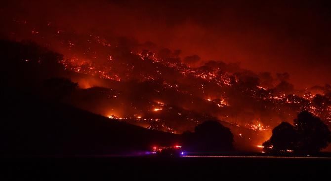 Властите в Австралия признаха за грешки в борбата с огнения ад