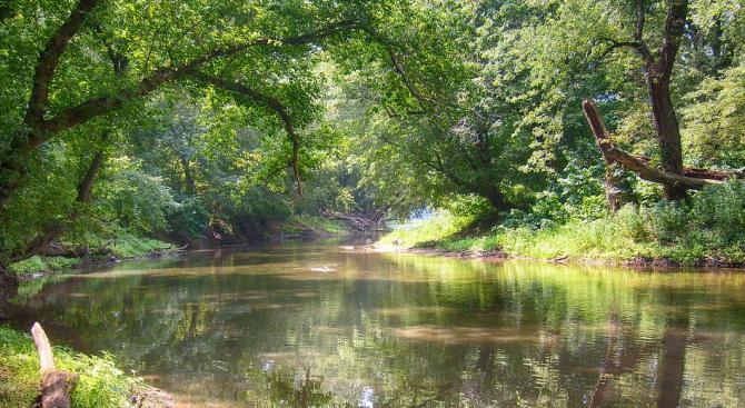 Прокуратурата в Плевен се самосезира за замърсяване на река Осъм