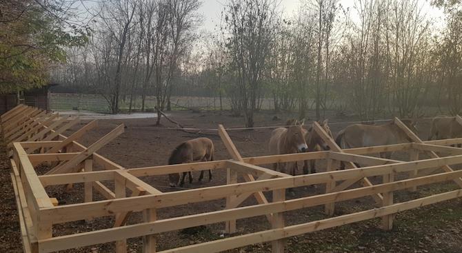Ремонтираха къщички на животни в зоопарка в Добрич