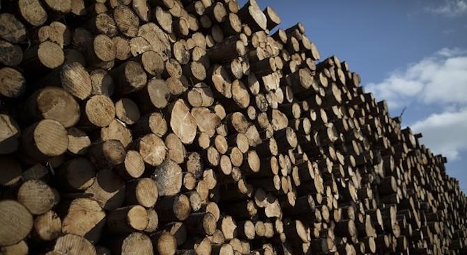 """Две катастрофи заради разпръснат дървен материал на АМ """"Тракия"""""""