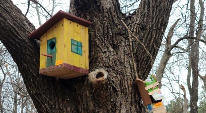 Деца подариха нови домове на птиците в Морската градина във Варна