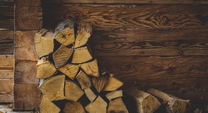 Разкриха няколко кражби на дърва за огрев