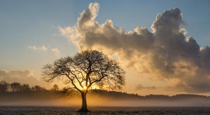 Времето днес: Слънчево и топло за сезона
