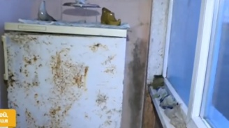 Възрастно семейство пропищя от мухъл и течове след саниране
