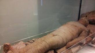 Мумия на 3000 г.
