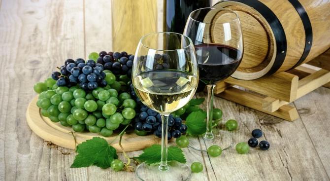 Климатичните промени застрашават 85% от районите, произвеждащи вино
