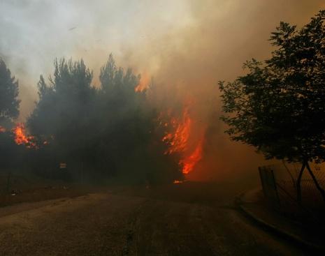 Кой стои зад пожарите в Амазония?