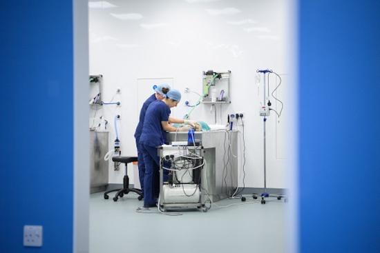 Превърнаха ли се лекарите в търговци на здраве?