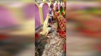 Индийци се молят на кошче-кенгуру