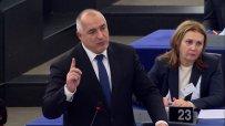 Борисов в Страсбург: Зелен човек съм! Спирал съм проекти, за да се излюпят щъркелчета. Министри са пренасяли блатни кокичета