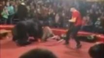 Мечка нападна дресьора си пред очите на зрителите