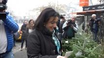 Танева: Купувайте живи елхички, помагате на семействата с репродуктивни проблеми
